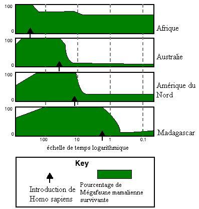 Description du % de megafaune dans divers continent au cours du quaternaire (image provenant de Wikipedia sous licence Creative Commons)
