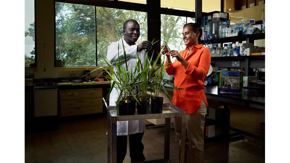 Segenet Kelemu © L'Oréal-UNESCO For Women in Science 2014
